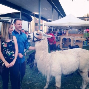 sam, lex and llama